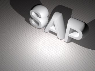 Claves para empezar en el mundo del sap